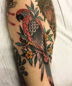 The elusive Long Beach parrot. Thanks as always,  you're the best Tyler ❤️ #traditionaltattoo #parrotsofinstagram #tattooart #oldlines…