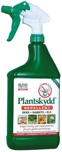 Deer Repellent: Plantskydd 32 oz Ready to Use by Tree World. $24.99. Plantskydd stimulates a fear-based response which will have animals looking for somewhere else to. Ready-To-Use Spray Bottle.. Plantskydd's long-term effectiveness is attributable to the tenacity of its 100% natural,. 1 qt. / 1 litre.. treats approx. 100 plants 1 ft. high.. Plantskydd is a natural product that is not harmful to animals or the environment, and contains no synthetic additives. The substa...