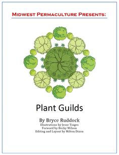 """Free Plant Guilds E-Book from Midwest Permaculture. """"Permaculture Guild""""  describe a collection of plants (a polyculture) that individually could survive on their own, but perform much better when grouped together."""