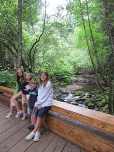 kids Muir Woods National Monument, Grandkids