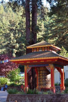 Land Of The Medicine Buddha in the Redwoods
