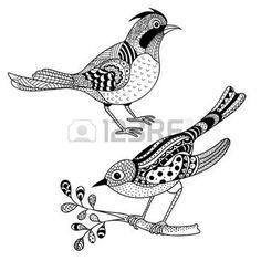 zentangle: Falcon zentangle vector, halcón ave de presa y