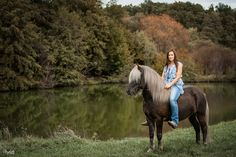 Fotografie Workshop, Pony, Coaching, Beautiful Horses, Animals, Inspiration, Island Horse, Horse Paintings, Animal Photography