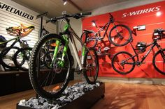 Specialized Concept Stores