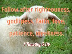 Follow after righteousness, godliness, faith, love, patience, meekness (1 Timothy 6:11b). 1 Timothy 6, Righteousness, Scripture Verses, Patience, Bible Verses, Scriptures