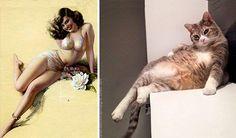 Pin-up dievčatá vs mačky! Kto pózuje lepšie?