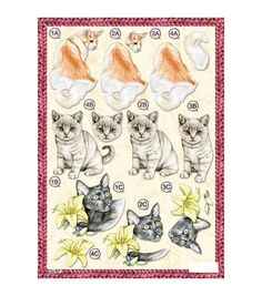 Craft UK 3-D Die-Cut Decoupage Sheet Mixed Cats