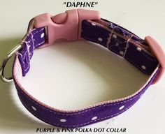 Purple & Pink Polka Dot Collar for Dogs and Cats