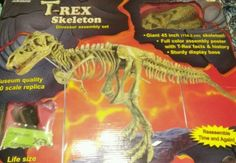Animals and Nature 31744: T-Rex Skeleton 45 Dinosaur B.C. Bones 1 10 Scale Never Assmbled New -> BUY IT NOW ONLY: $65 on eBay!