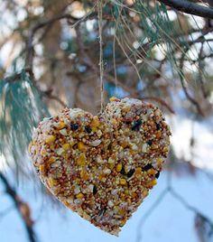 Comedouro de pássaros com sementes, em forma de coração, dica de jardins e hortas