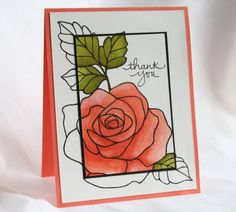 Rose Wonder Spotlight Technique cropped_May 19 2016