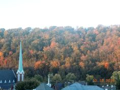 Was sitting on the steps of our front porch enjoying my afternoon coffee and saw that the colors of the hill in front of us look quite lovely .. thought that I'd share them with all of you. The photos doesn't show the colors .... as lovely as we are seeing them here .. but am sharing them with you all anyway. Enjoy