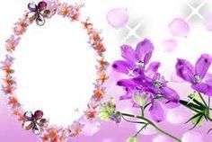 molduras de flores - Resultados Yahoo Search da busca de imagens