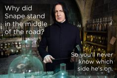 18 jokes only Harry Potter fans will find funny. :)