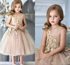 Flower Girls Dresses For Weddings Champagne Tulle Appliques Tea Length A Line Girls Pageant Gowns Zipper Back Customized Kids Party Dress