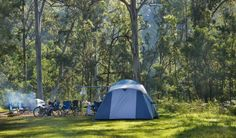 Euroka campground in Blue Mountains National Park. If you're after a truly authentic Australian experience, pack up your #camping gear and head to the Euroka campground, near Glenbrook on the eastern side of the park, right near the beautiful Nepean River. : http://www.nationalparks.nsw.gov.au/Blue-Mountains-National-Park/Euroka-campground/camping