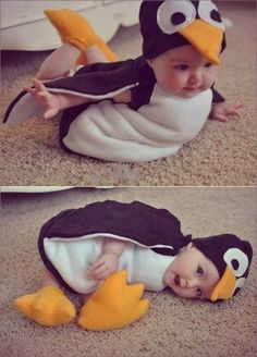 cutest baby in cutest penguin custome ever omg im gonna die of cute overload