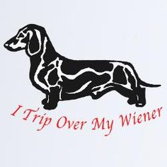 Funny!  If a guy had this I'd probably fall in love.  Well, assuming he really had a dachshund.  :-)