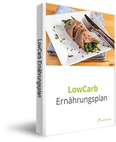 Low Carb Ernährungsplan zur Ernährungsumstellung (inspiriert durch die LOGI Methode)
