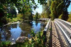 Waterworks Park St. Thomas