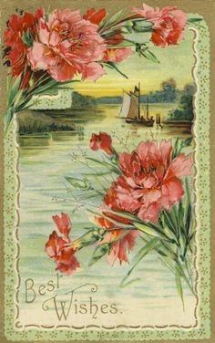 Vintage post card with scene and carnations