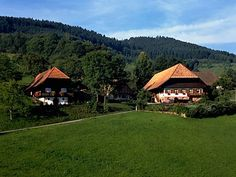 Black Forest National Park – wild and untamed