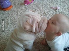 Puppy kisses! *