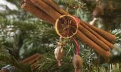 It's time to reclaim the true spirit of the season and rediscover the pleasures of home-made decorations and gifts in naturally striking designs, using rich pickings from your winter garden.
