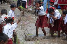 Students enjoying in paddy field on the occasion of Ropai Mela (असार १५). #nepal #children #fun #mud | Photo by Bhaju Mahesh