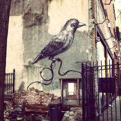 #Roa #streetartnyc #nygarden #publicgarden #outdoorspace #streetart #murals #urbanart #les #lowereastside #eastvillage #nyc #manhattan #newyorkstreets #contemporaryart #graffiti #wallart #spraypaint #muralart #nycstreetart #graffart #publicart