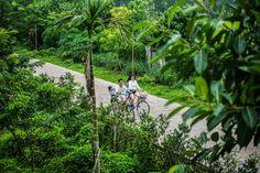 Đạp xe trong khung cảnh xinh đẹp của resort giữa tiết trời thu mát dịu để hưởng thụ cảm giác tự do yên bình tràn ngập mọi giác quan, để thấy thư thái nhẹ nhàng không chút vướng bận. #resort #cycling #autum #peaceful