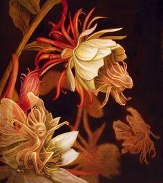 O Tapete Vermelho da Imagem: Images' Red Carpet: As fadas acordam com o desabrochar das flores / Benjamin Lacombe´s flower fairies