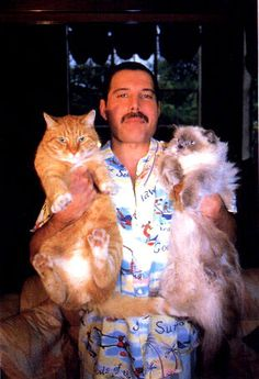 Probably one of my favorite famous men with cat pics I've stumbled across.  His cats are so freaking fat!!!