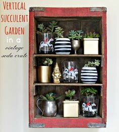 how to: succulent garden + vintage soda crate turned awesome shelf