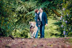Pet Portraits | Pet Photographer | Basingstoke | Hampshire