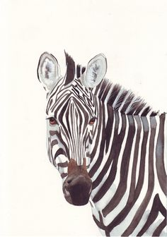 Zebra Painting  Print of watercolor painting by Splodgepodge- Love it <3