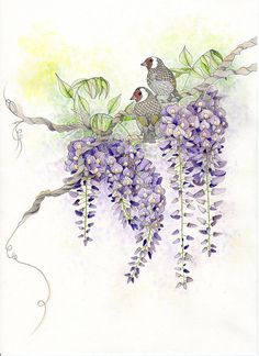 Original painting of wisteria & goldfinch. by TheTangledPeacock