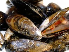 How to Smoke Mussels | eHow.com