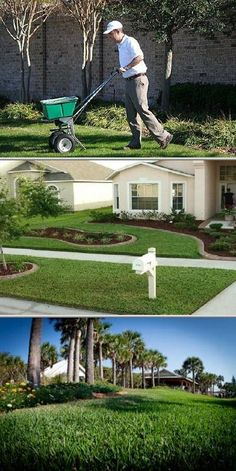 Mighty Green Lawn Care is one of the lawn companies that offers lawn care services, weed control, lawn fertilization and insect control. They are trusted lawn professionals who are keen in details.