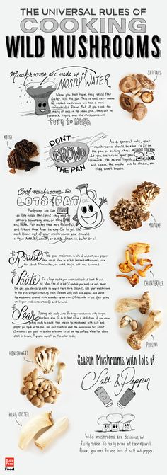 This huge collection of the Rules of Cooking Wild Mushrooms and Recipes helps to find delicious ways to eat wild food foraging mushrooms in meals. How To Cook Mushrooms, Edible Mushrooms, Stuffed Mushrooms, Growing Mushrooms, Cooking Tips, Cooking Recipes, Healthy Recipes, Cooking Videos, Cooking Classes