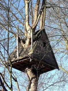 Fancy A-Frame Tree House