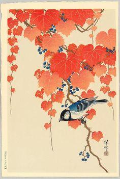 """Bleu bird and red ivy in autumn"", Koson (Hoson) Ohara (1877-1945) - 1930s. [source: Ronin Gallery].  Fonte: https://www.facebook.com/UkiyoESumiE/photos/pb.207467629375037.-2207520000.1421694516./600112990110497/?type=1&theater"