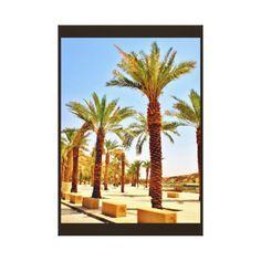 #photo - #Wadi Namar Date Trees Canvas Print