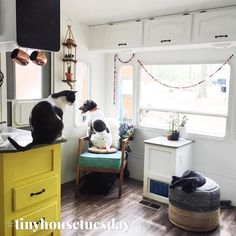 Today I'm launching a BRAND (spankin') NEW weekly feature: Tiny House Tuesday! Every Tuesday from here on out I'll feature one of my favorite tiny house accounts.  Today's is brought to you by @188sqft! Mandy and Kevin renovated a traditional RV into a chic and streamlined home (adorable pets included)! Head over for more beautiful pics of their home and travels.  To be featured use the hashtag #tinyhousetuesday