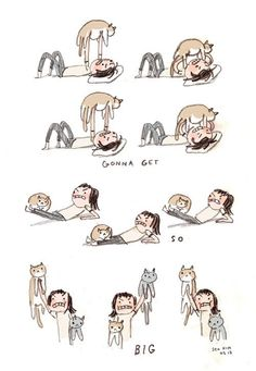 Cat lady workout!