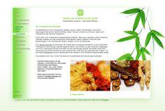curlee true communication gestaltet Webseite für Praxis Dr. Hempen & Kollegen, München