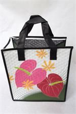 Tropical Paper Garden Hot & Cold Reusable Bag Haka