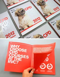 Royal Veterinary College CPD Brochure 2012