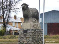 Wildlife Tourism – Tours In Australia Wildlife Tourism, Lamb, Tours, Australia, Big, Travel, Viajes, Destinations, Traveling