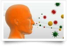 PURIFICACION DE AIRE AIRLIFE  te responde ¿que tan peligrosas son las alergias? A pesar de que son muy molestas, por lo general, las alergias no son complicaciones graves, pero sí pueden acabar en cuadros más complejos, como el asma. De hecho, se calcula que el 80 por ciento de los asmáticos tienen, en menor o mayor grado, una base alérgica.